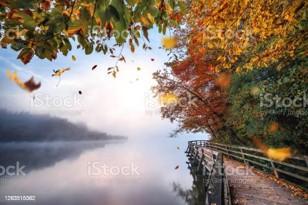 Photo of Idyllic Autumn Scene By The Lake