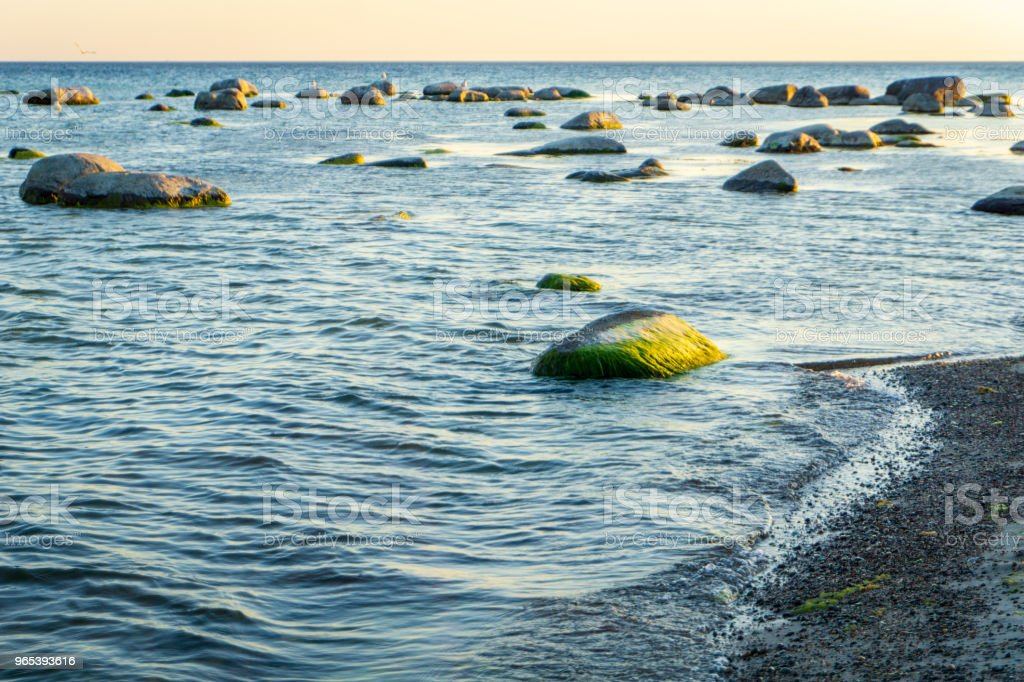 Idyllic Baltic sea with rocks in Bornholm, Denmark on a day in summer royalty-free stock photo
