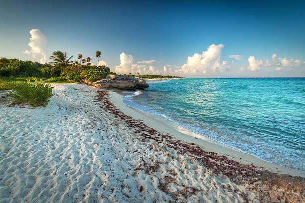 idyllic beach of caribbean sea in playa del carmen - playa del carmen stock photos and pictures