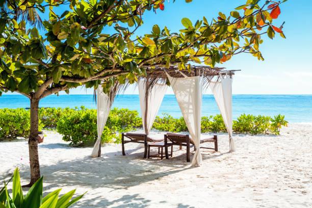 Idyllic Beach On Zanzibar Island stock photo