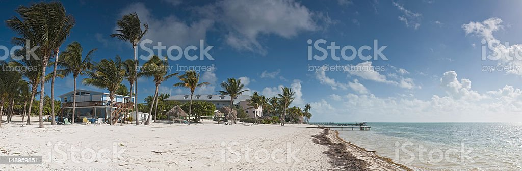 Idyllic beach palms ocean Florida stock photo