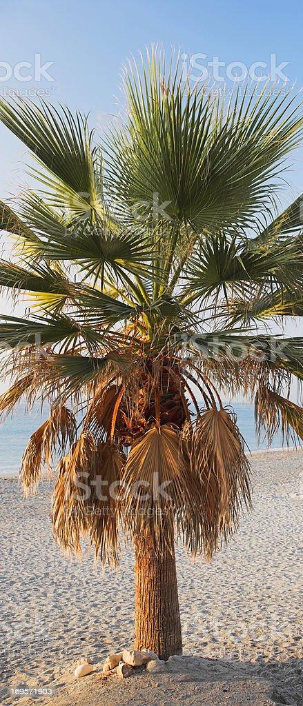 Idyllic beaches... royalty-free stock photo