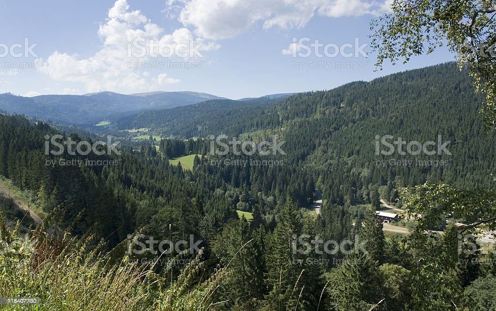 idyllic Black Forest scenery royalty-free stock photo