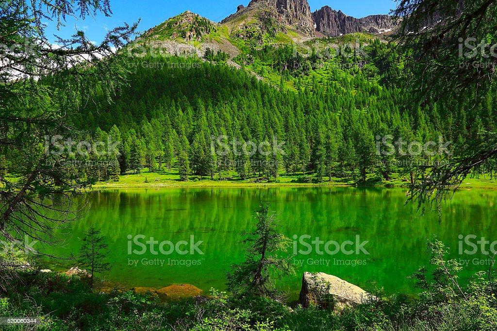 Idyllic blue Alpine Lake Carezza, Dolomites, Italian Tirol alps stock photo