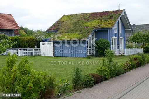 Hohwacht, Schleswig-Holstein, Germany, Europe,  08/08/2019: Idyllic blue wooden house in the countryside with green plants on the roof.