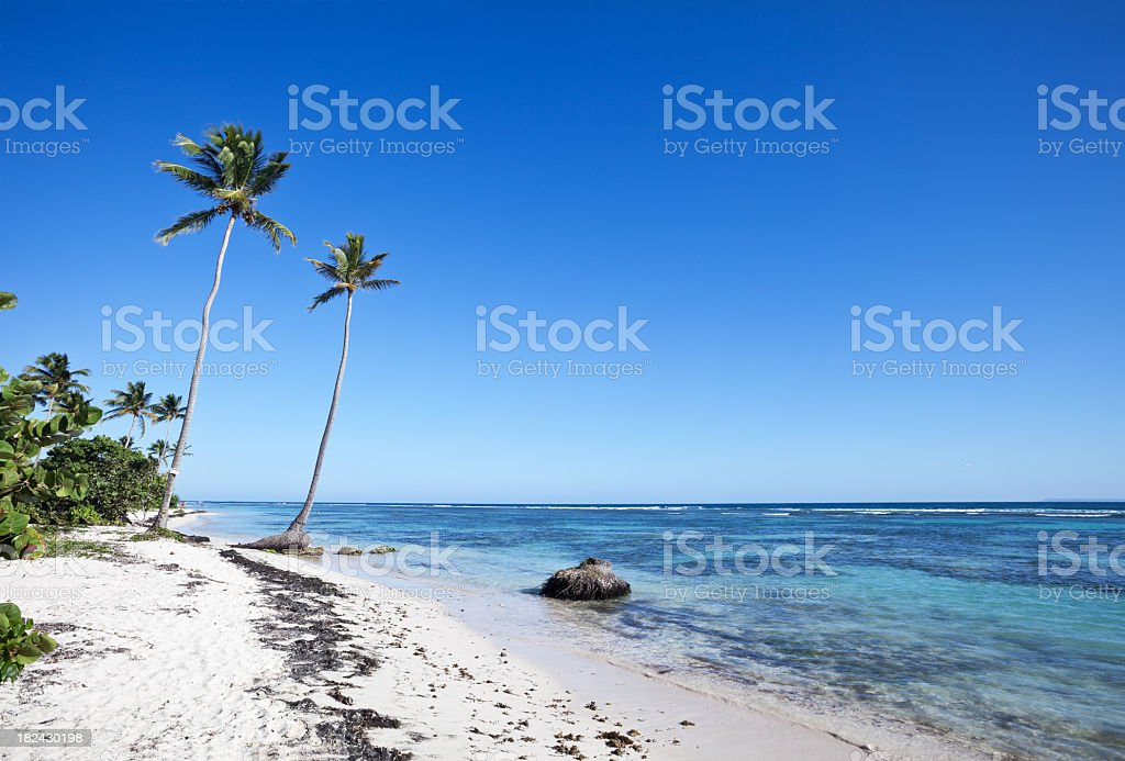 Idyllic Caribbean Beach stock photo