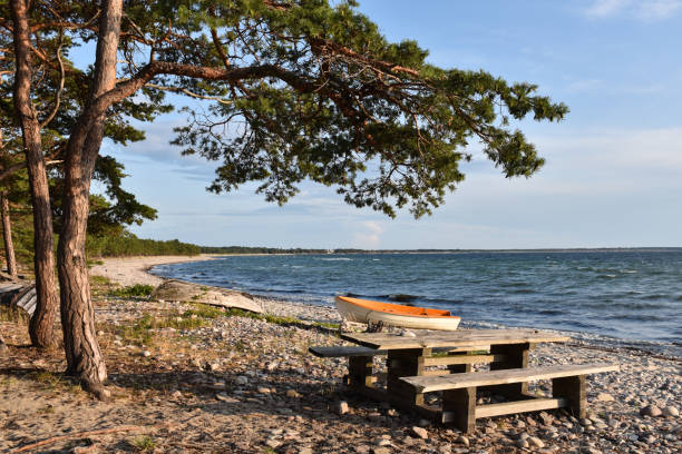 Idyllic coastline of the Baltic Sea with landed boat and benches stock photo