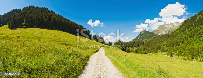 Earth track through vibrant green pasture overlooked by mountain peaks and pine forests under panoramic blue summer skies. ProPhoto RGB profile for maximum color fidelity and gamut.