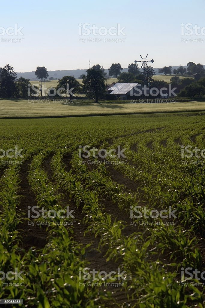 idyllic farm and cultivation royalty-free stock photo