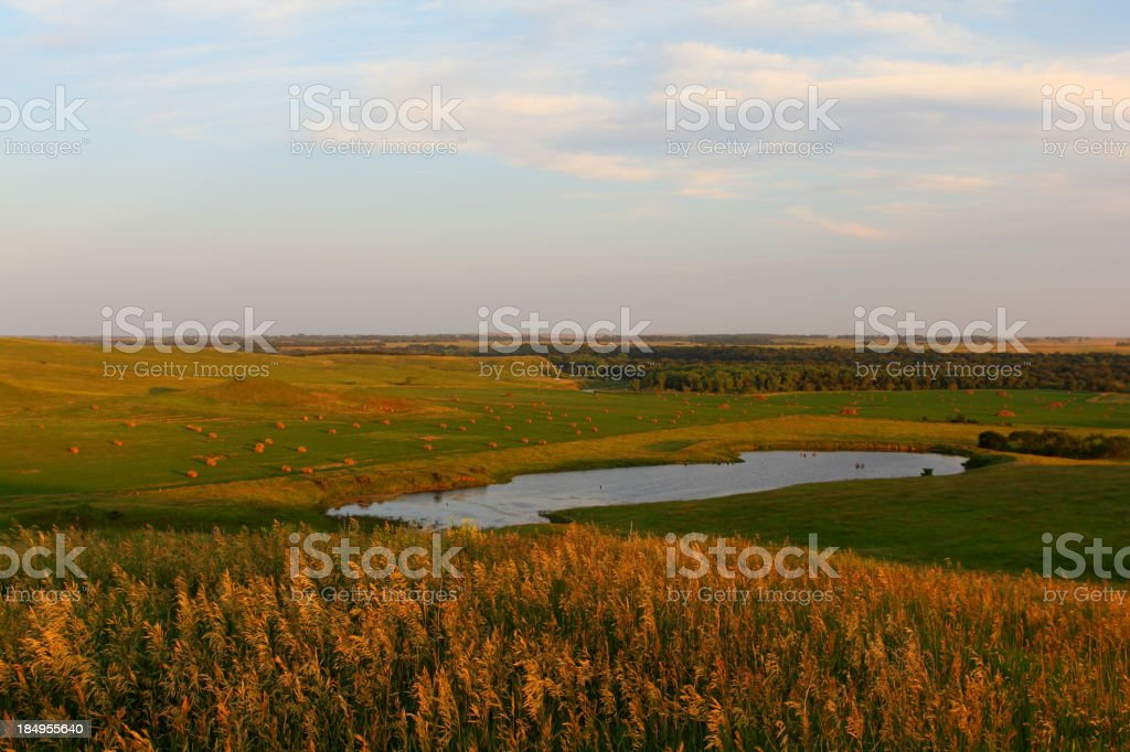 Idyllic Farming Landscape stock photo