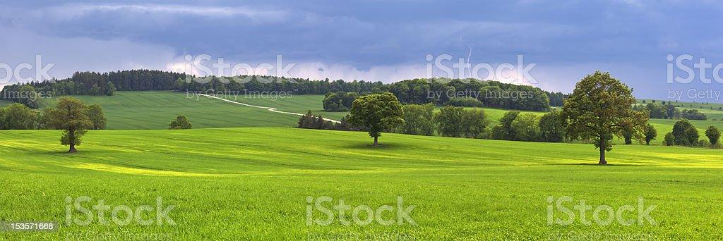 Idyllic Field Panorama royalty-free stock photo