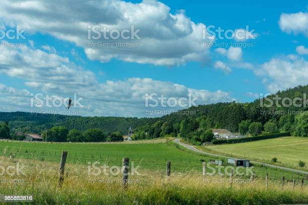 Photo of Idyllic french country village with a crow flying over the meadow