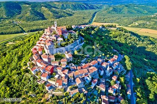 istock Idyllic hill town of Motovun aerial view, Istria region of Croatia 1016723712