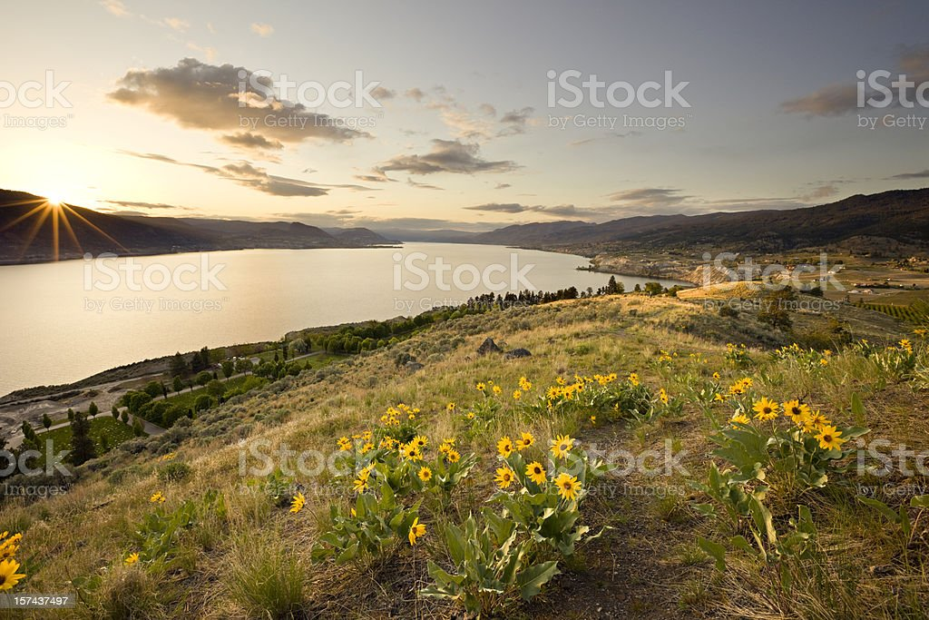Idyllic hillside and large lake at sunset stock photo