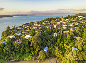A high angle view of detached homes on Auckland's North Shore, surrounded by woodland and nature.