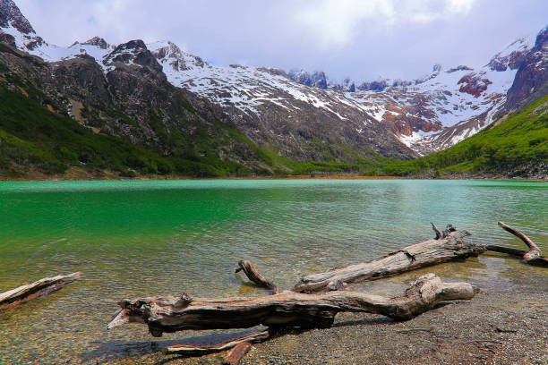 idílico laguna esmeralda - lago esmeralda – ushuaia, tierra del fuego, argentina - laguna - fotografias e filmes do acervo