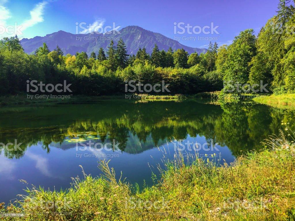 Idyllischer See in Bad Reichenhall, Deutschland – Foto