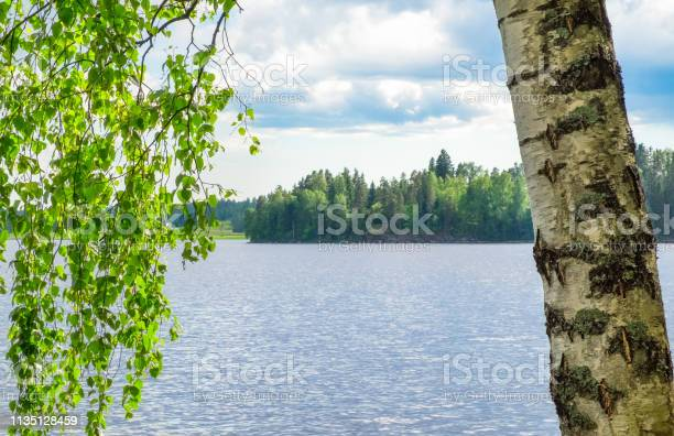Photo of Idyllic lake view with close up from birch tree at spring day in Finland