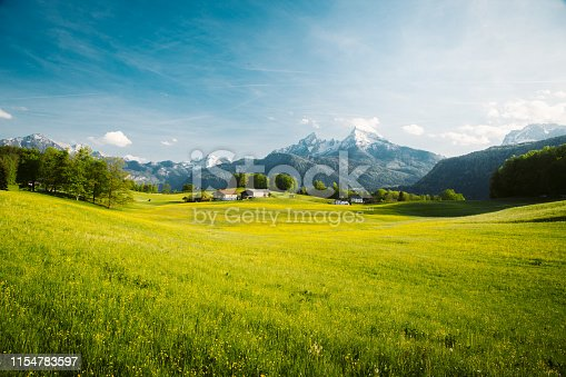 istock Idyllic landscape in the Alps with blooming meadows in springtime 1154783597