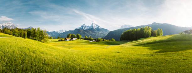Idyllische Landschaft in den Alpen mit blühenden Wiesen im Frühling – Foto