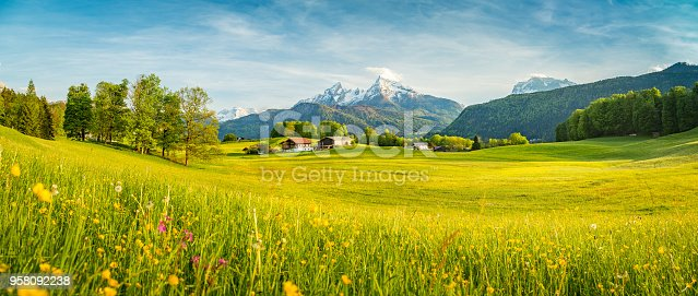 istock Idyllic landscape in the Alps with blooming meadows in springtime 958092238