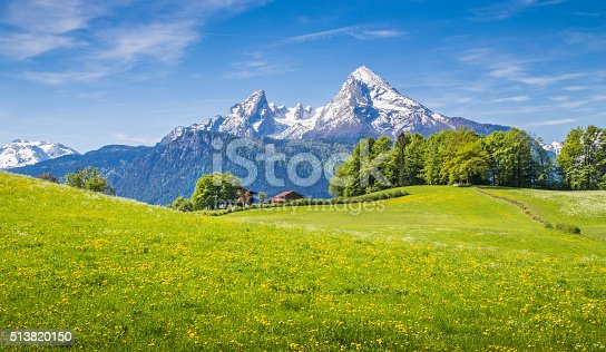 istock Idyllic landscape in the Alps with green meadows and flowers 513820150
