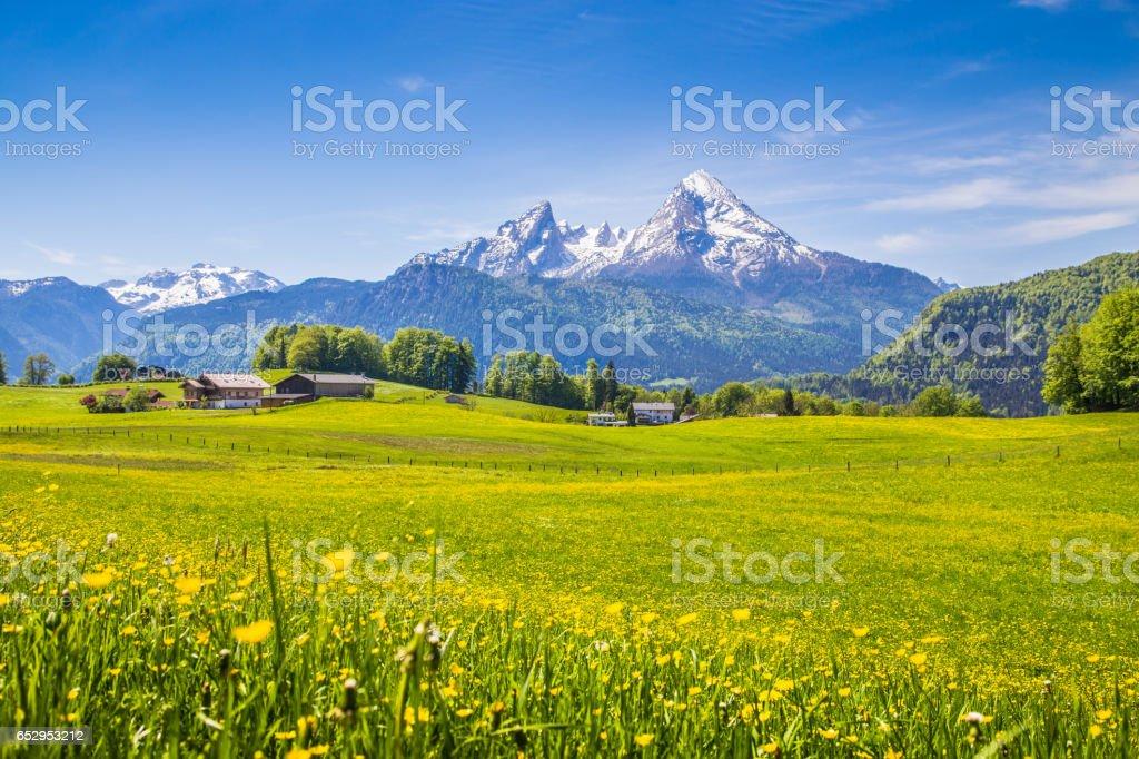 Idyllische Landschaft der Alpen mit grünen Wiesen und Blumen – Foto