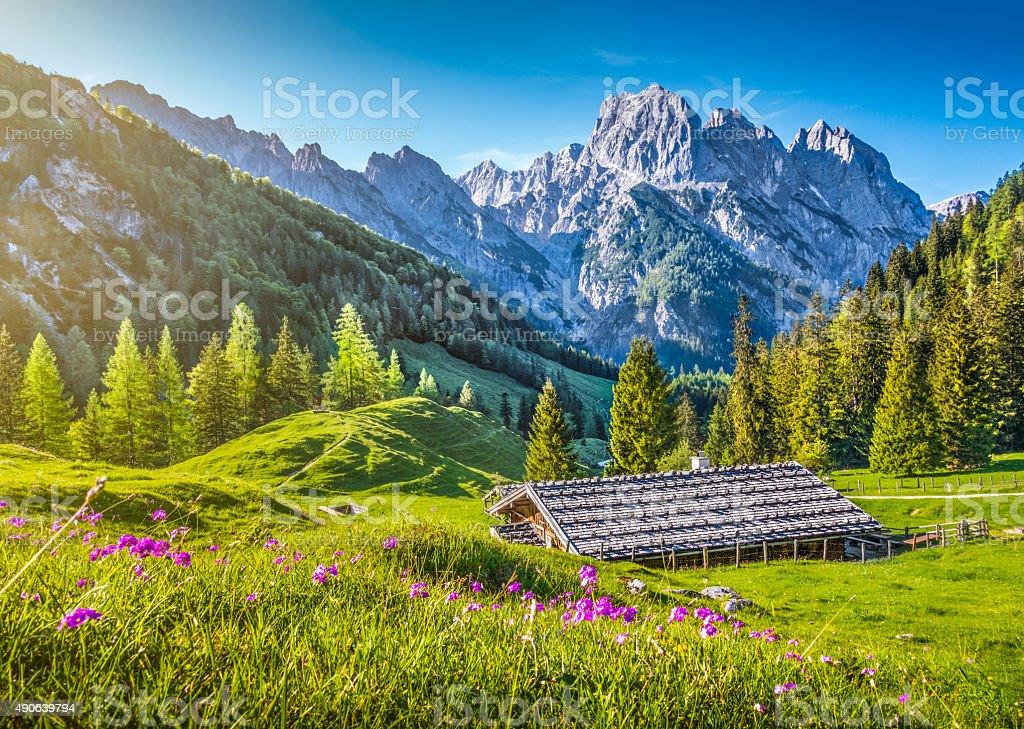 Photo Libre De Droit De Paysage Idyllique Dans Les Alpes Dans Un Chalet De Montagne Au Printemps Banque D Images Et Plus D Images Libres De Droit De 2015 Istock