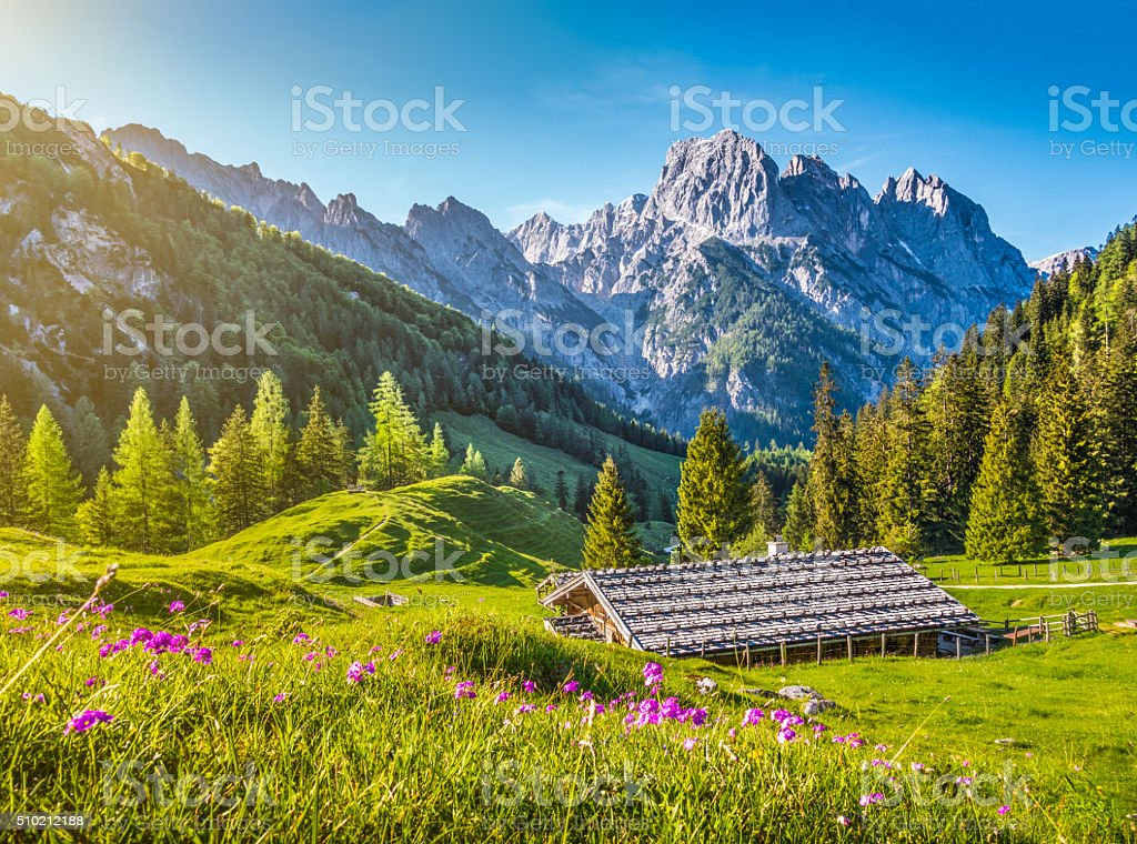 Idyllic landscape in the Alps with mountain chalet in springtime stock photo