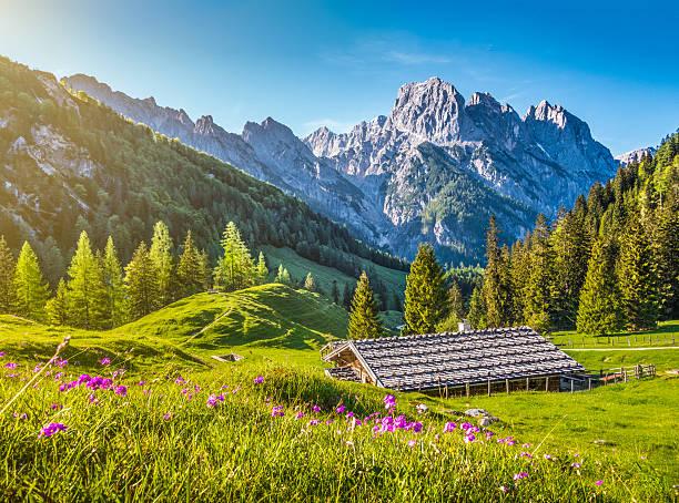 idyllische landschaft der alpen, berg-chalet im frühling - berge in bayern stock-fotos und bilder