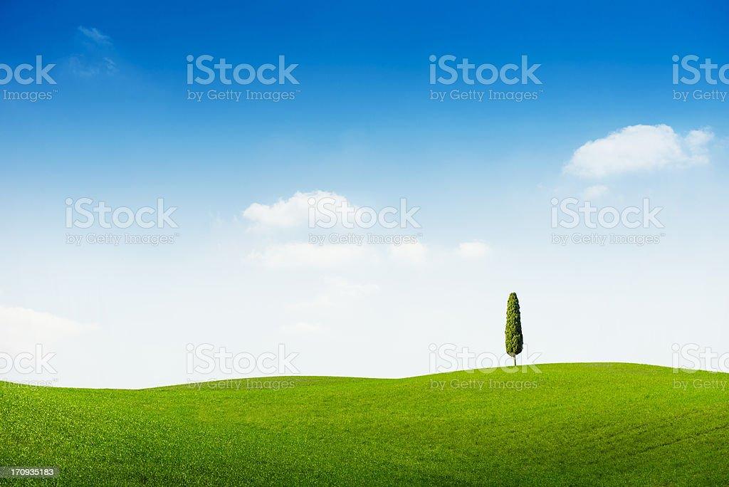 Idyllic landscape in Tuscany royalty-free stock photo
