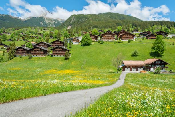 Idyllische Landschaft der Schweiz – Foto