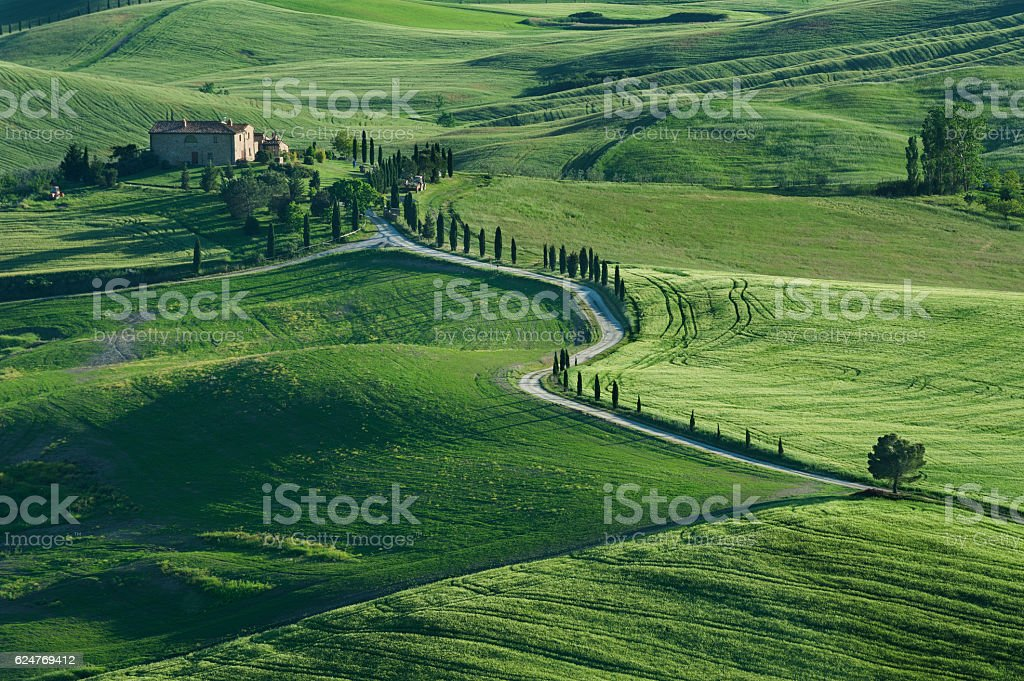 idyllic landscape of Tuscany, Italy stock photo