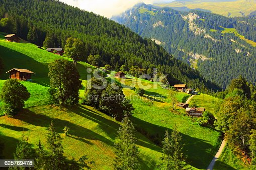 Idyllic meadows, Grindelwald chalets and pine trees: Swiss Alps sunrise sunny sunrays