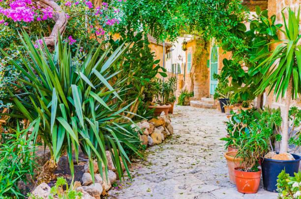 Idyllique maison méditerranéenne gardenh belle fleur plantes - Photo