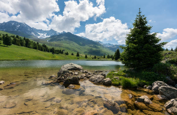 idyllic mountain lake landscape in the swiss alps - lakeshore stock photos and pictures