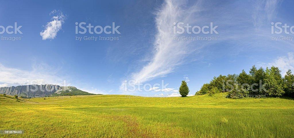 Idyllic mountain meadows (panorama) stock photo