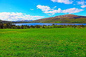 istock Idyllic Norwegian Green coutryside, Mountain, fjord landscape, Norway, Scandinavia 586736302