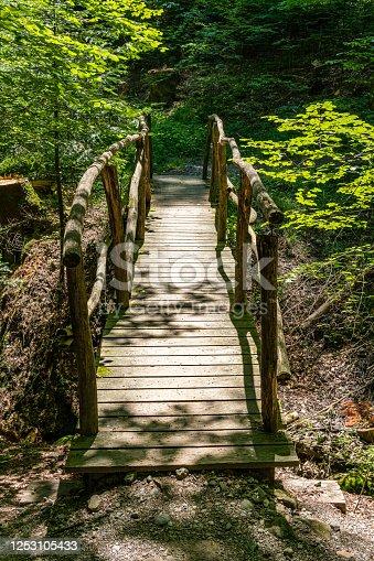 istock Idyllic old bridge in a forest 1253105433
