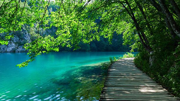 idyllischer spazierweg - nationalpark plitvicer seen stock-fotos und bilder