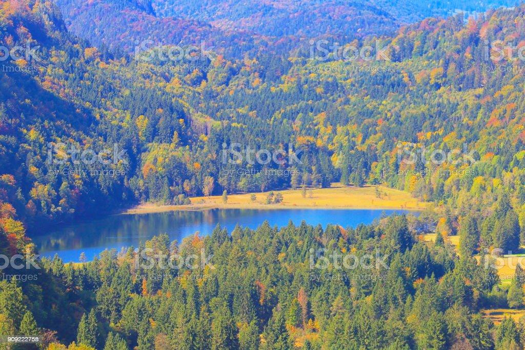 Idyllic pine woodland, Alpsee lake in Bavarian alps at autumn – Fussen - Germany stock photo