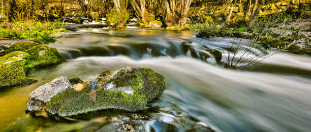 Idyllic Portuguese landscape with lush green moss and flowing river stock photo