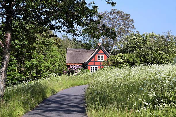 Idyllische roten Urlaub cottage mit blühenden Wiese – Foto