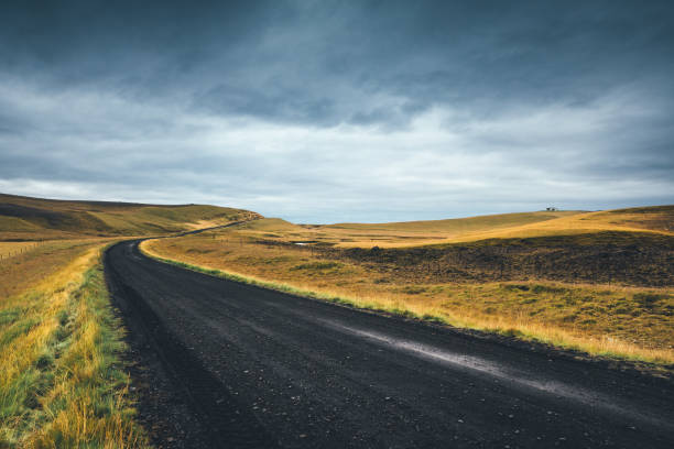 idyllic road in iceland - borchee stock pictures, royalty-free photos & images