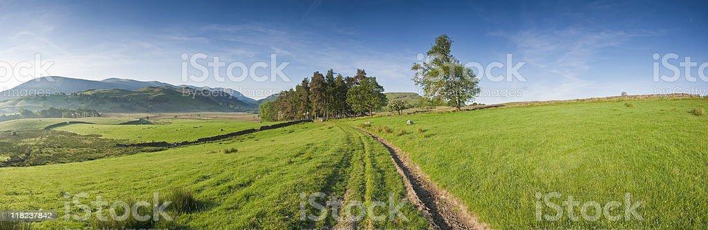 XXXL Idyllic Rural royalty-free stock photo