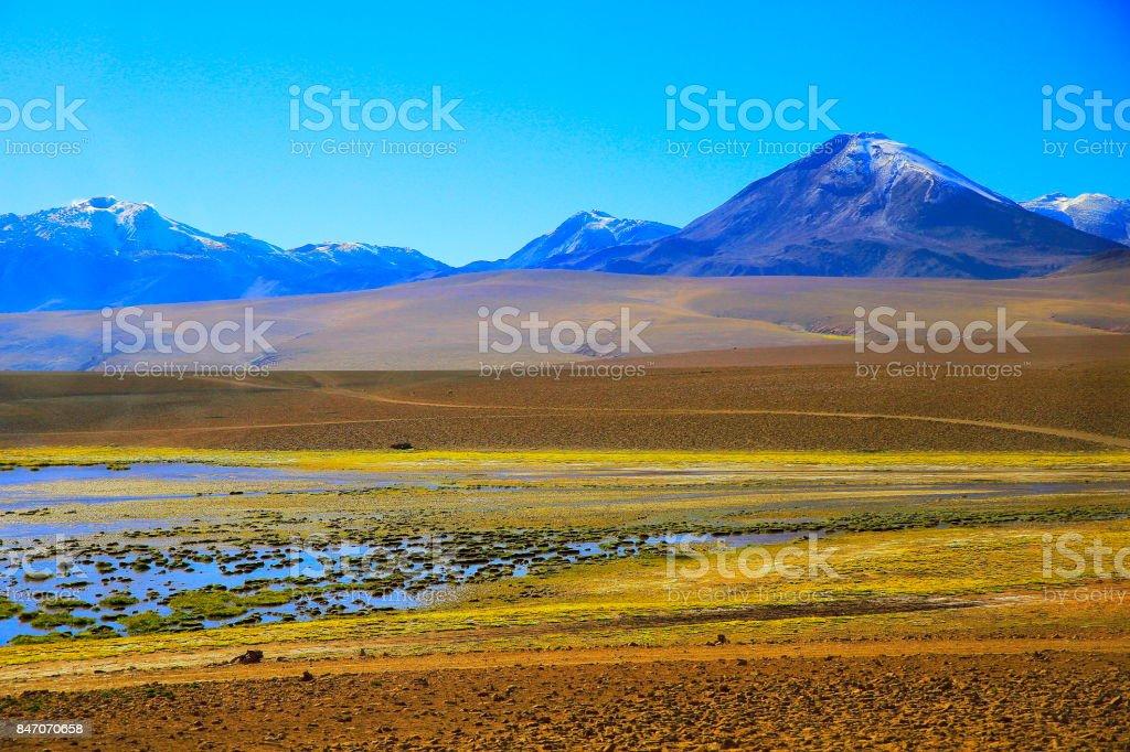Idyllic Salar de Tara salt marsh, lake and river swamp - Volcanoes and Idyllic Atacama Desert altiplano, volcanic landscape panorama – San Pedro de Atacama, Chile, Bolívia and Argentina border stock photo