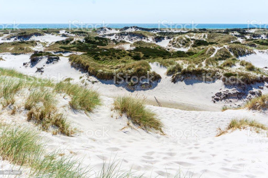 Idyllische zandduinen in Bornholm, Denmark op een dag in de zomer - Royalty-free Achtergrond - Thema Stockfoto