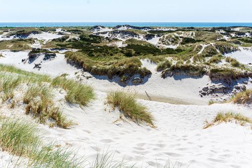 Idyllische Zandduinen In Bornholm Denmark Op Een Dag In De Zomer Stockfoto en meer beelden van Achtergrond - Thema