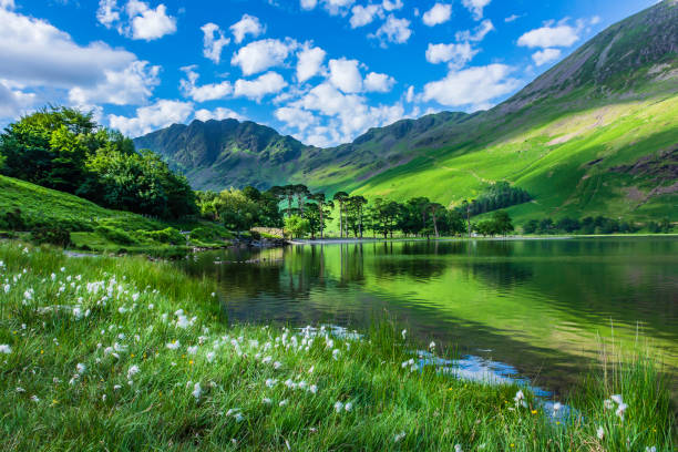 Idyllic scenery of English Lake District in springtime. Idyllic scenery of English Lake District in springtime.Trees and grass growing on lakeshore and green hill reflecting in lake water. Sunlight kissing mountain slope in background.Majestic landscape scene. cumbria stock pictures, royalty-free photos & images