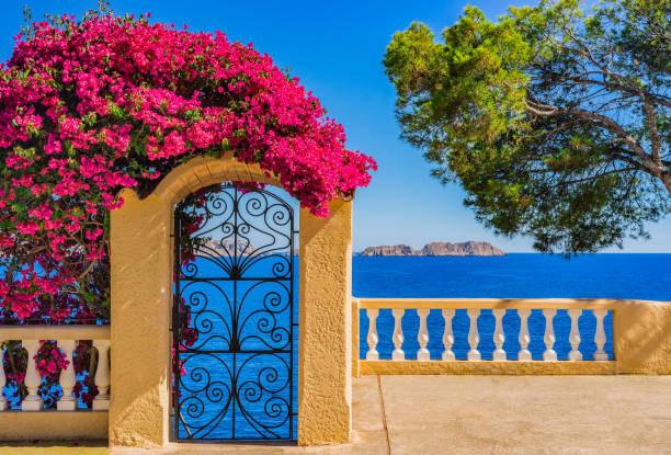 idyllic sea view of the mediterranean sea spain, at the coastline of majorca island, balearic islands - spain stock pictures, royalty-free photos & images
